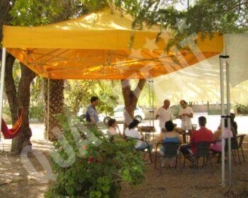 Estas são duas das nossas tendas 6 por 4 amarelas QT S-45 Premium. As imagens foram-nos enviadas pela Aula Abierta, de Alicante.